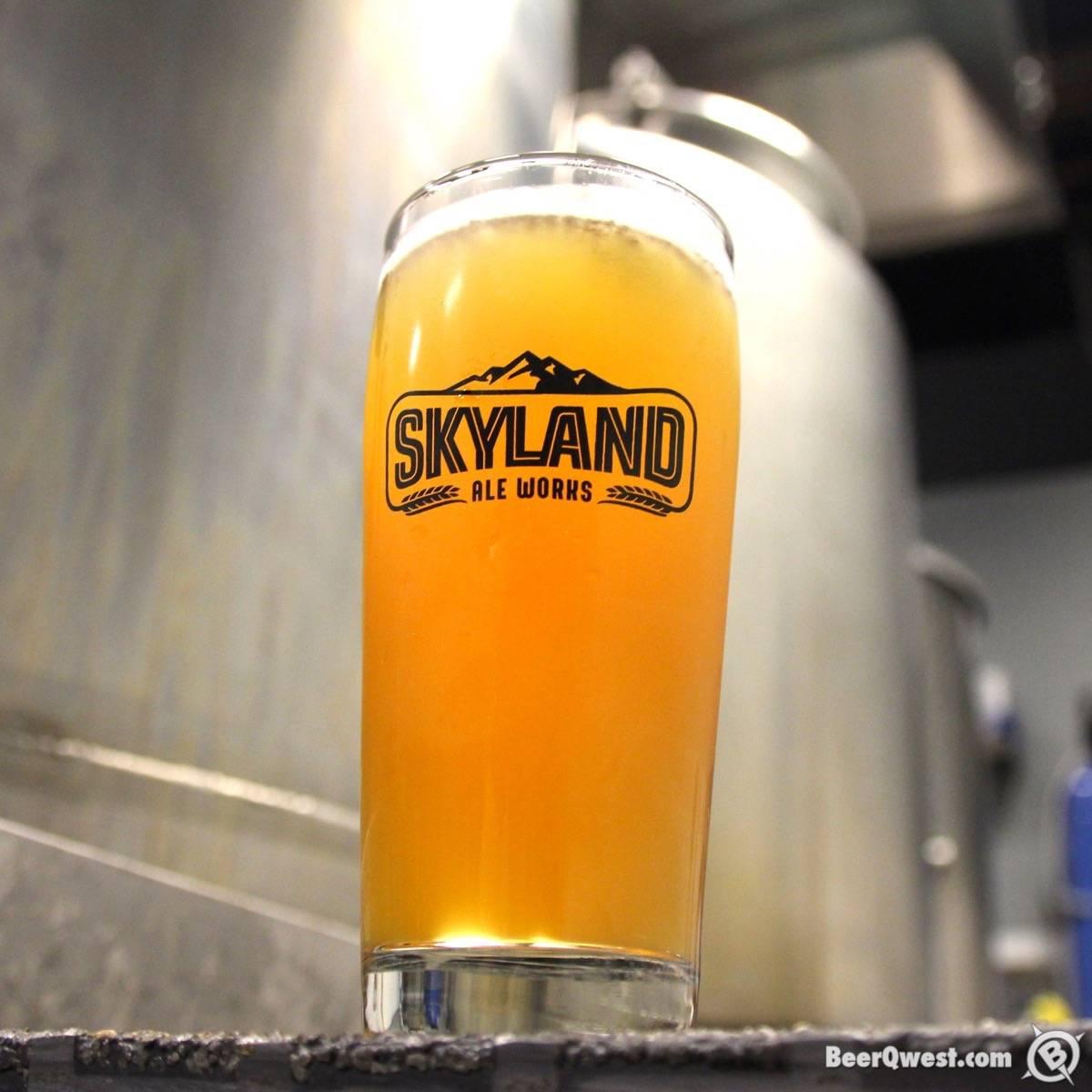 Gaslamp IPA - Skyland Ale Works