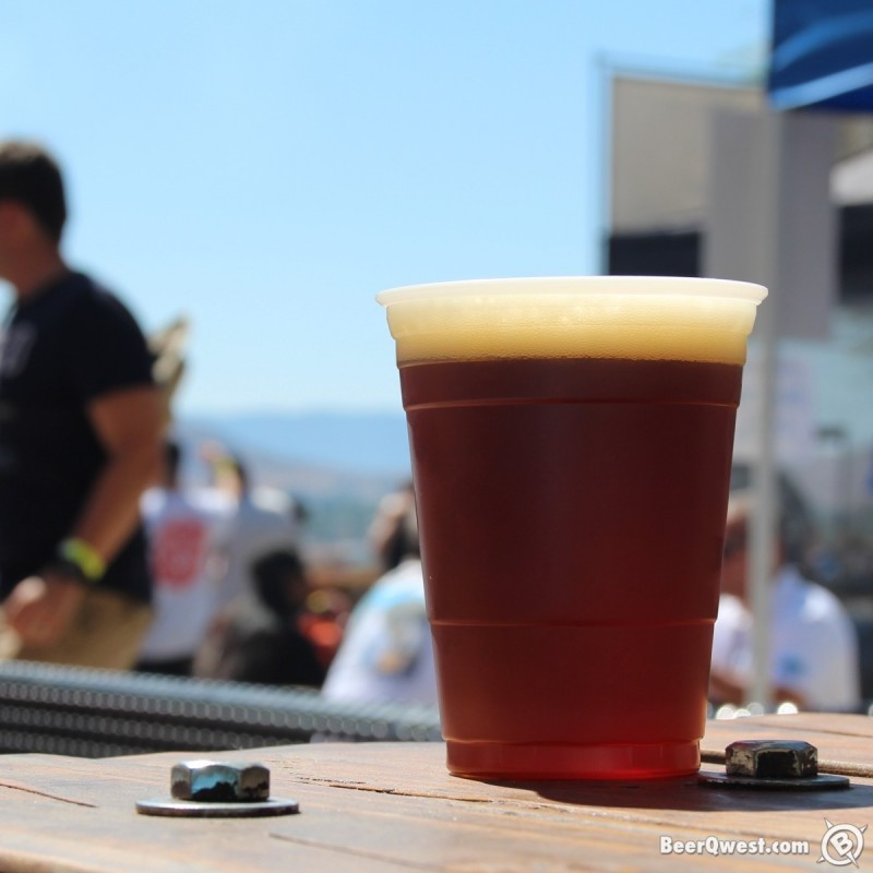 Packinghouse Brewing Double Dry Hopped Heritage Pale Ale at Brew With a View Riverside Air Show 2015